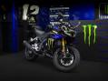 YZF-R 125 Monster Energy Yamaha MotoGP